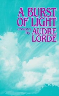 A Burst of Light: Essays