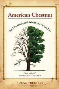 American Chestnut: The Life