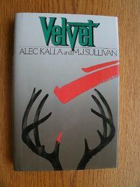 Velvet: A Novel of Suspense