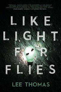 Like Light for Flies