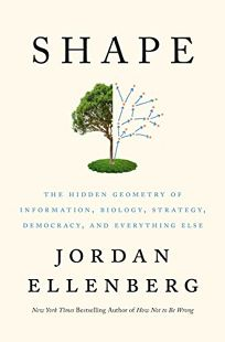 Shape: The Hidden Geometry of Information