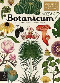 Children S Book Review Botanicum By Kathy Willis Illus