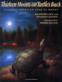 Thirteen Moons on Turtles Back