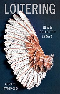 Loitering: New & Collected Essays