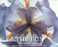 The Iris: The Rainbow Flower