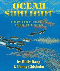 Ocean Sunlight: How Tiny Plants Feed the Seas
