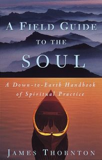 A Field Guide to the Soul: A Down-To-Earth Handbook of Spiritual Practice