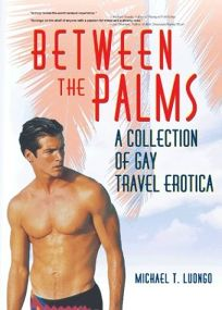 Between the Palms: A Collection of Gay Travel Erotica
