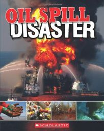 Oil Spill Disaster