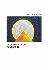 Crosslight for Youngbird