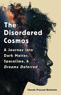 The Disordered Cosmos: A Journey into Dark Matter