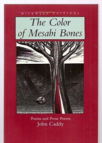 The Color of Mesabi Bones: Poems and Prose Poems