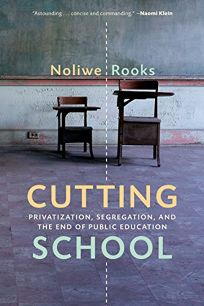 Cutting School: Privatization