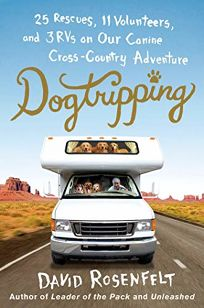 Dogtripping: 25 Rescues