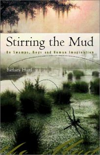 Stirring the Mud: On Swamps