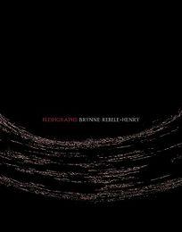 Fleshgraphs