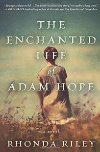 The Enchanted Life of Adam Hope