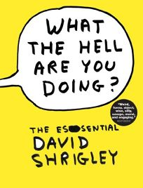 What the Hell Are You Doing? The Essential David Shrigley