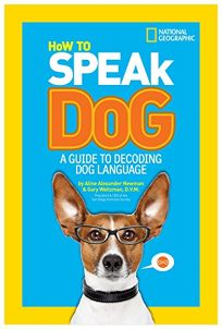 A Guide to Decoding Dog Language