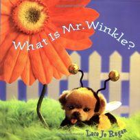 WHAT IS MR. WINKLE?