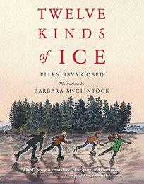 Twelve Kinds of Ice