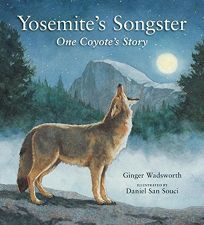Yosemites Songster: One Coyote's Story