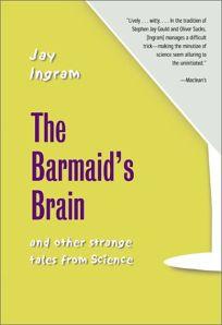 Barmaids Brain