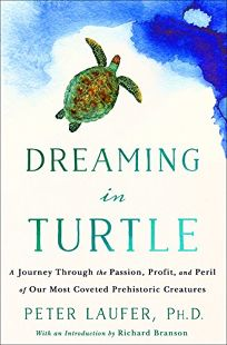 Dreaming in Turtle: A Journey Through the Passion