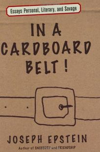 In a Cardboard Belt: Essays Personal