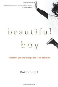 Beautiful Boy: A Fathers Journey Through His Sons Meth Addiction