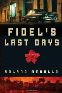 Fidels Last Days