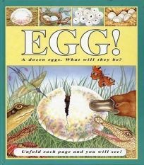 Egg!: A Dozen Eggs
