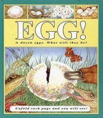 Egg!: A Dozen Eggs