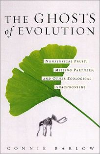 THE GHOSTS OF EVOLUTION: Nonsensical Fruit