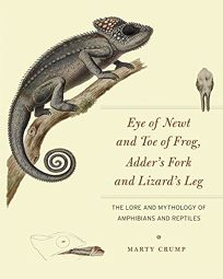 Eye of Newt and Toe of Frog