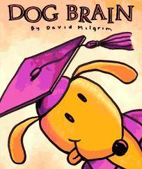 Dog Brain