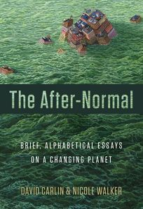 The After-Normal: Brief