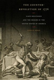 The Counter-Revolution of 1776: Slave Resistance and the Origins of the United States of America