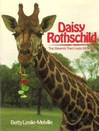 Daisy Rothchld Juv