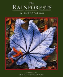 The Rainforests: A Celebration