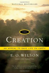 The Creation: A Meeting of Science and Religion