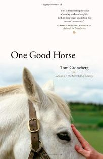 One Good Horse: Learning to Train and Trust a Horse
