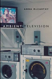 AMBIENT TELEVISION: Visual Culture and Public Space