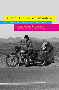 A Short Life of Trouble: Forty Years in the New York Art World