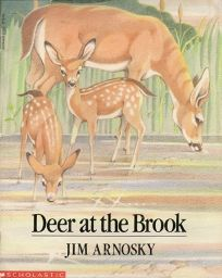 Deer at the Brook