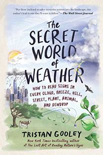 The Secret World of Weather: How to Read Signs in Every Cloud