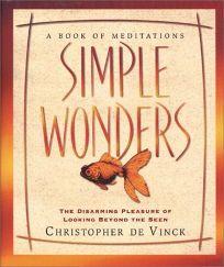 Simple Wonders: The Disarming Pleasure of Looking Beyond the Seen