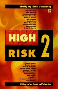 High Risk 2: Writings on Sex