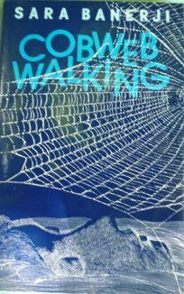 Cobwebwalking