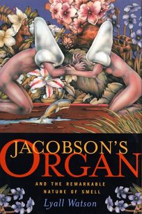 Jacobsons Organ: And the Remarkable Nature of Smell